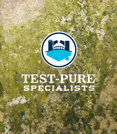 2 River Group Test Pure Specialists logo with green mold background